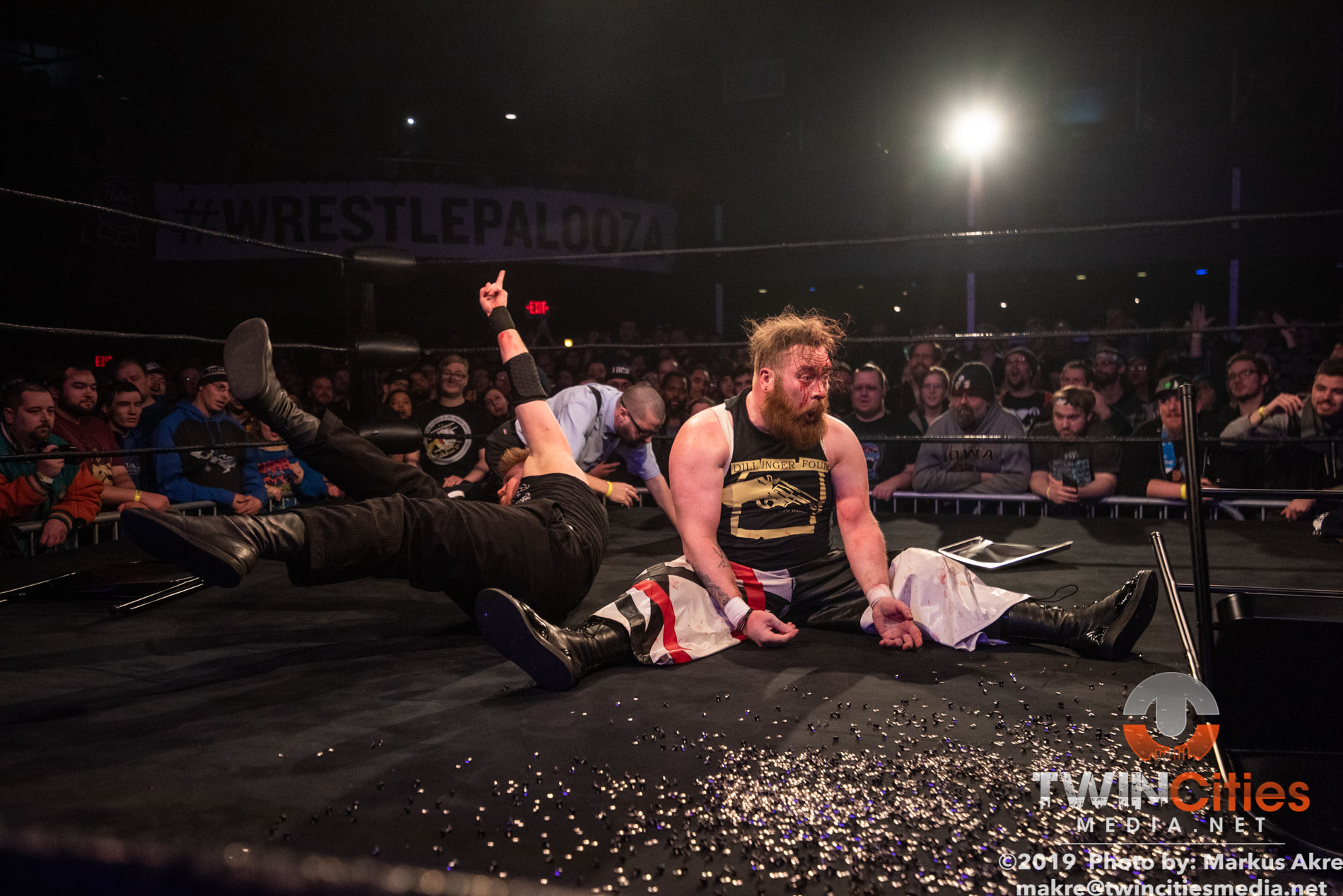 Wrestlepalooza - Match 4-11