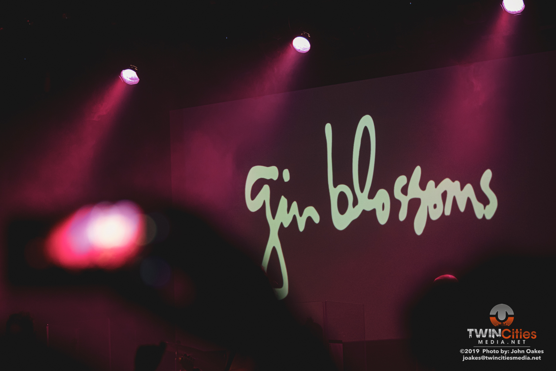 Gin-Blossoms9