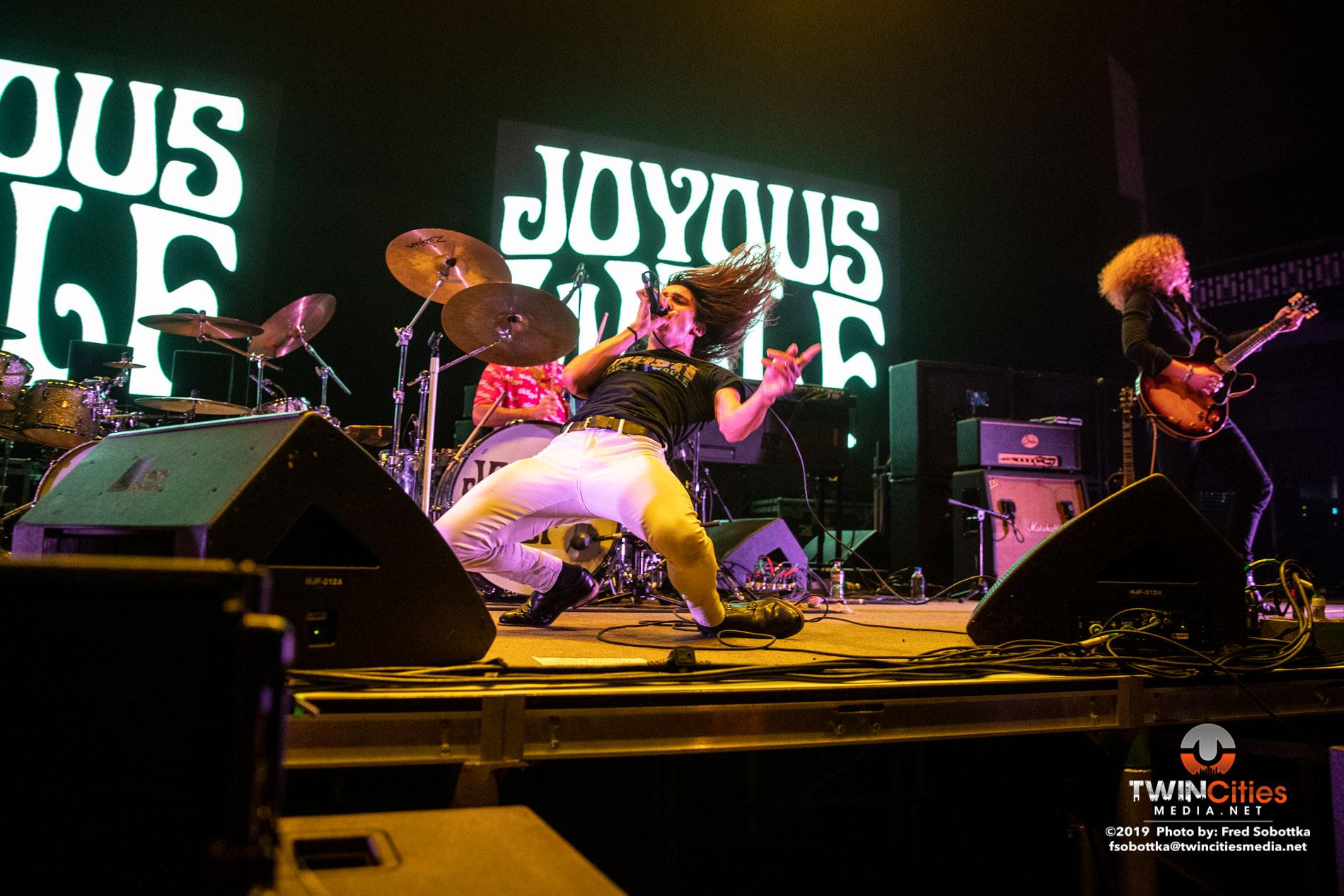 Joyous-Wolf-19