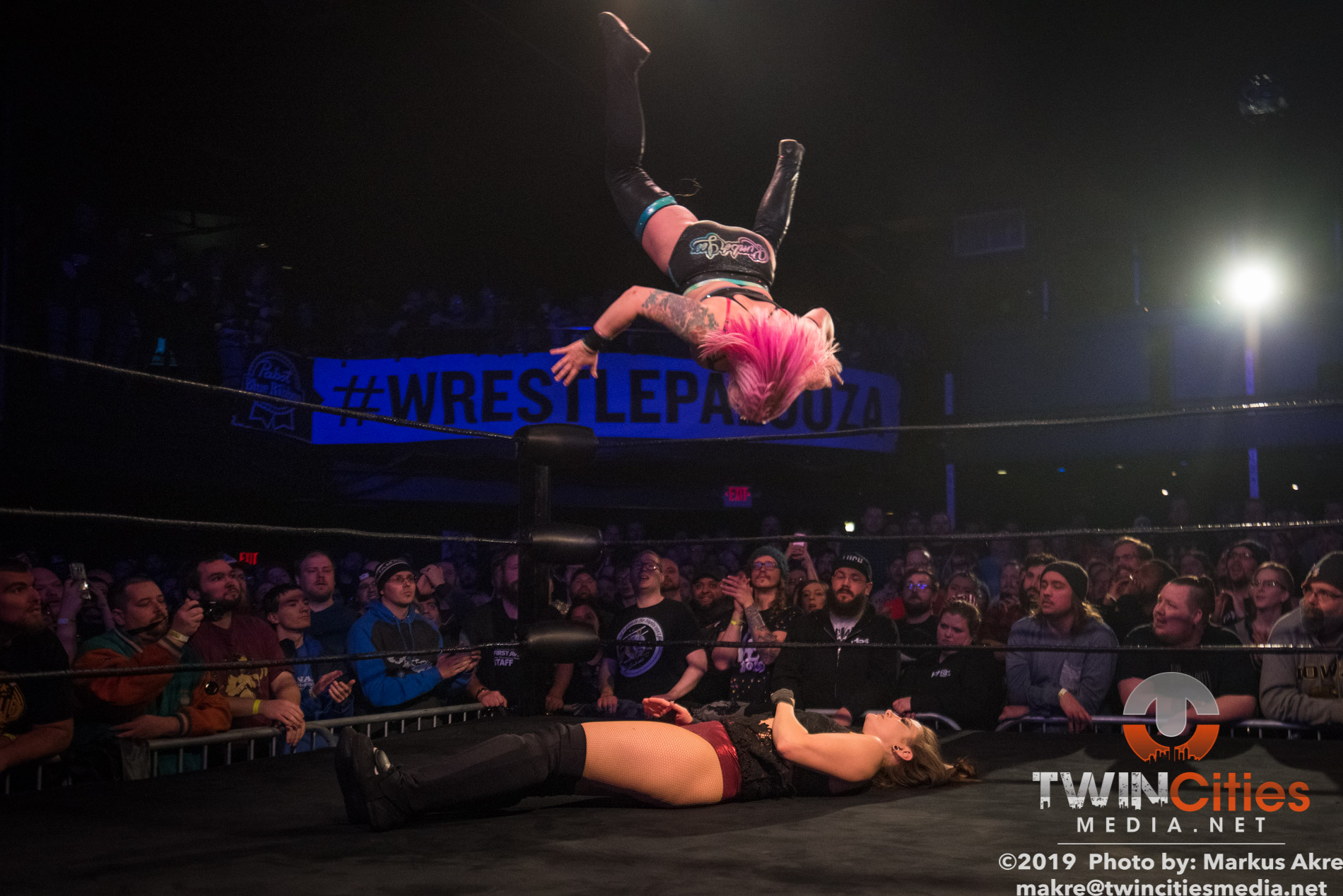 Wrestlepalooza - Match 2-14