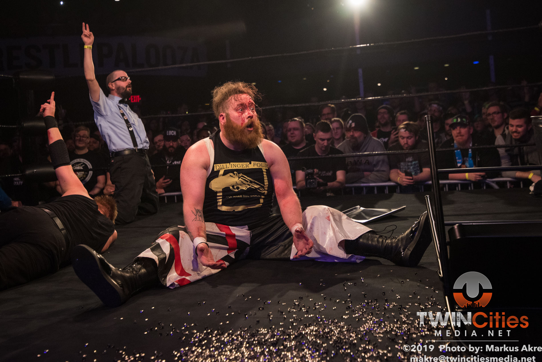 Wrestlepalooza - Match 4-12