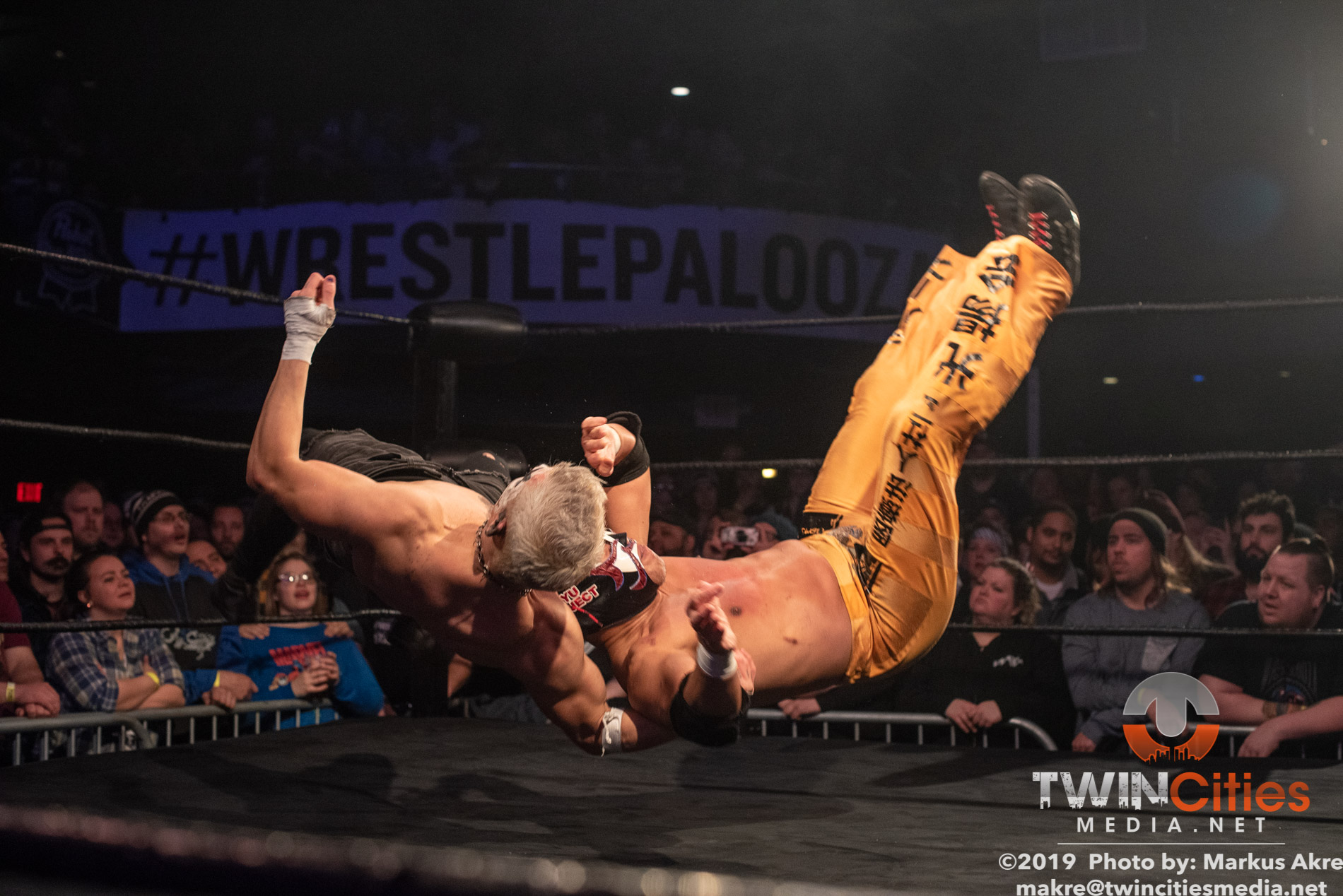 Wrestlepalooza - Match 5-9
