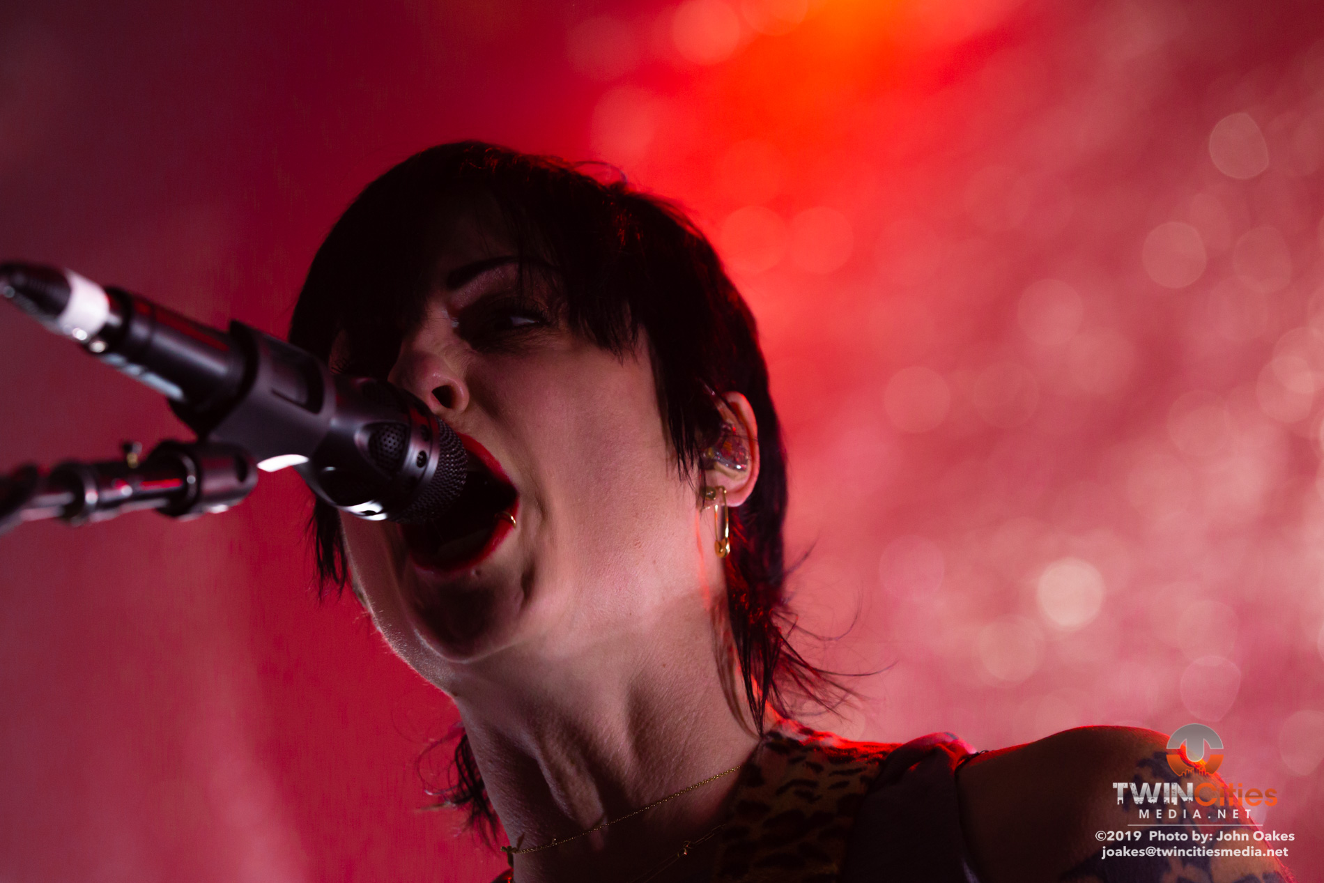 TheDistillers6