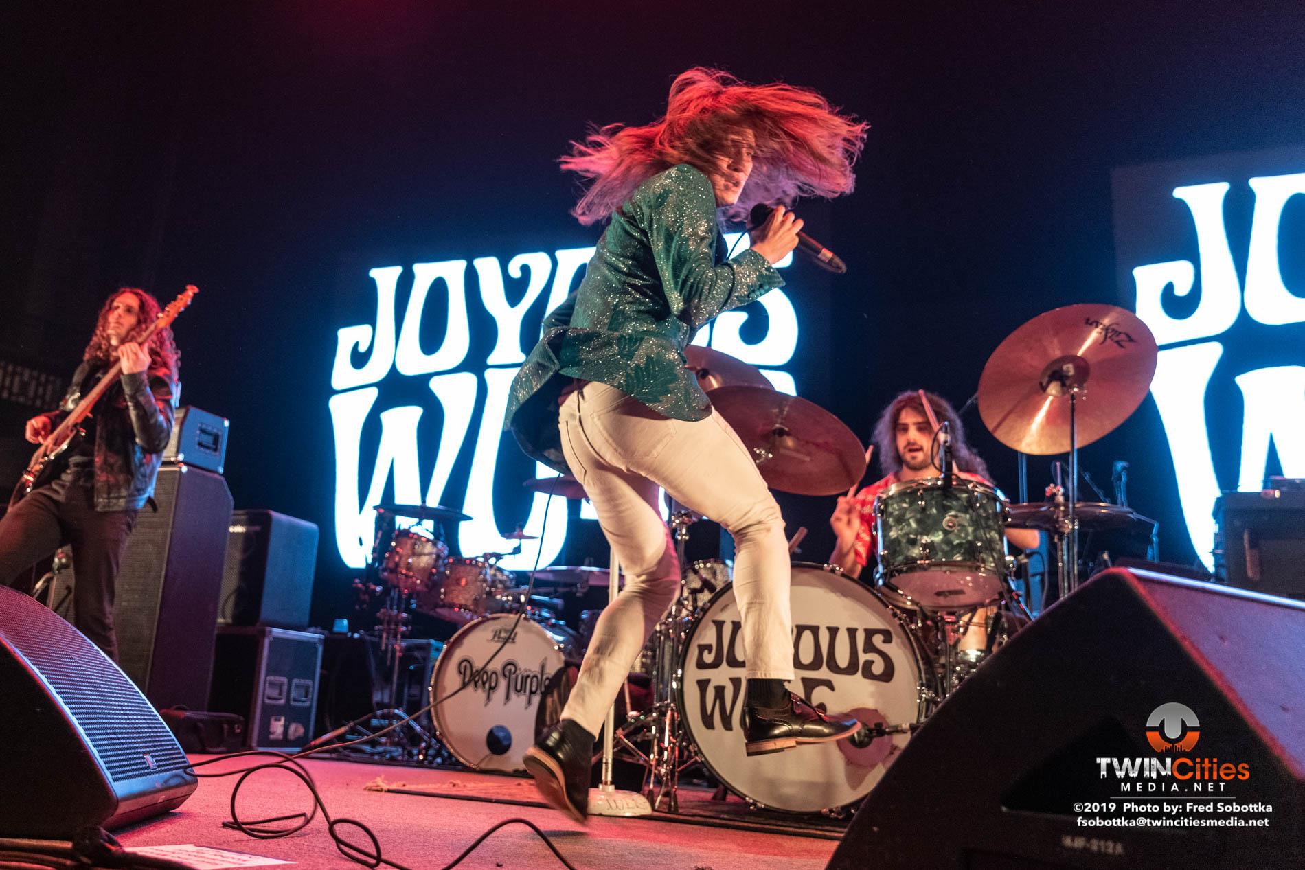 Joyous-Wolf-12